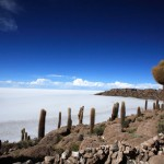Fish Island offers vistas of Salar de Uyuni's impressive 10,582 square kilometre surface.  Photo by Robert J. Brodey