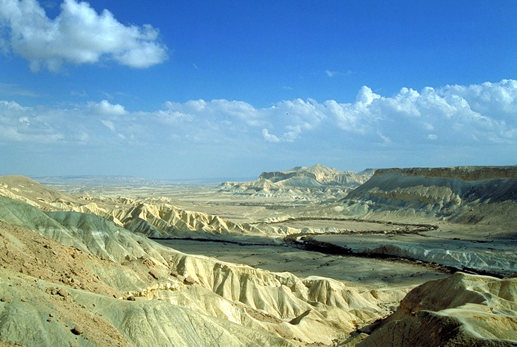 Desertscapes of the Negav.  Photo by Robert J. Brodey