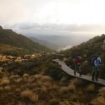 New Zealand - Robert Brodey -001