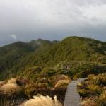 New Zealand - Robert Brodey -003