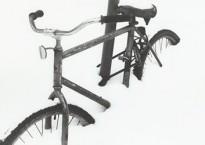 Winter Bike - Robert Brodey